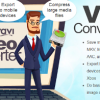 What Can the Movavi Video Converter For Mac Do?