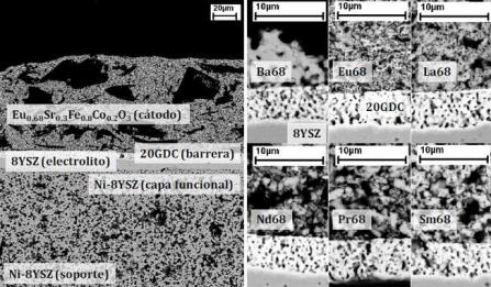 micrographs of fuel cell cathodes